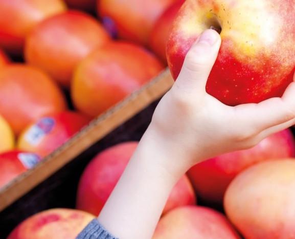 Contro gli sprechi alimentari: via libera alle norme che favoriscono la donazione